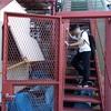 年2回だけの隠れイベント「テレビ塔階段のぼり2018」を体験|札幌の景色を一望!