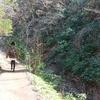 高尾山をリフトで登ってみた