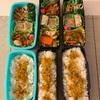 長男大学受験〜オーキャンへ〜 今日のお弁当と今日のわんこ
