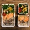 【常備菜活用】大根と豆苗サラダ(サラダチキン入り)と鮭弁当
