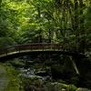 日本最古の修験道、大阪泉佐野市の犬鳴山七宝滝寺は原始の緑豊かなパワースポット。