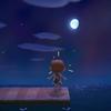 【ゲーム】島生活1ヶ月ちょっと、「子供向け」を考えてみる件