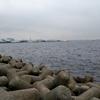 得体の知れない東京湾の何か