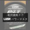 【メンズ美容】LUSH(ラッシュ)パワーマスクを使ってみた!