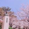 月組「夢現無双/クルンテープ」感想~「ここ変だよ夢現無双」と珠城さんは朝ドラ夫枠、大劇場の桜。あと月城かなと。