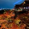 【珉珉餃子と清水寺ライトアップ】夜の京都🍁の楽しみ方😊