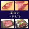 美味しい魚「ハチビキ」/料理は刺身・炙り・湯引きの3種。