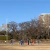 12/28蹴り納めU-12/U-11わかばフェス