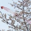桜を撮りたいのか、桜の景色を撮りたいのか。