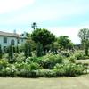 港の見える丘公園のイングリッシュローズガーデンの薔薇が見頃&横浜山手西洋館の花と器のハーモニーも6月開催!!