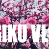 【VOLG】梅の季節。梅ヶ丘の羽根木公園にに満開の梅を見に行って来ました。