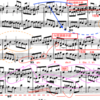バッハ平均律1巻8番 Fuga 〜楽曲分析 平行調提示部とIV調提示部〜