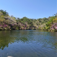 春ウララ、六甲摩耶山でMAYASONG♪