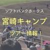 ソフトバンクホークスの宮崎キャンプ見学ツアー情報!(2019年)