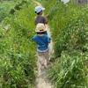 登園自粛 子供達とお散歩