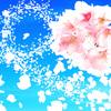 「桜の咲く頃にはいつも思いだす…」episode-16
