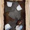 10分で完了!カブトムシに産卵させる方法!