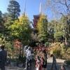 原稿。高幡不動。小島善太郎記念館。ジム。韋駄天。