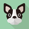 【犬 児童書 おすすめ】フランダースの犬など、犬が登場する児童書。