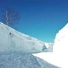 雪のひるがの高原サービスエリア(SA) (岐阜)