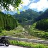 モーニングと四谷の千枚田と鳴沢の滝で自然を満喫