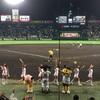 阪神タイガース 17年ぶり最下位決定。