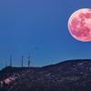 月と太陽の陰陽バランス【ストロベリームーン】