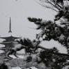 【大雪】雪化粧を纏った京都をてくてく散歩してきただけの日記