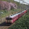 【2014/05/06】札幌圏でケツとサクラを愛でた日…