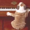 ピアノのレッスンはオンラインで継続中です