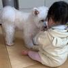 ☆相思相愛の娘とワンコ☆