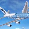 【ズバリ】飛行機の価格はいくら?飛行機の値段 燃料代 維持費は? 自分で操縦出来る? #乗り天