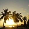 ビーチとカーニバルとココナッツと-ブラジル マセイオ旅行記(2012/01)