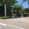 根津神社で珍しい光景をみた話