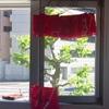 紅花と 矢車染め