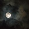 満月ですね。