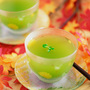 緑いっぱいで癒やされる! ~チェジュの茶ノ木の畑~