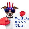 ソラチカルートが枯渇してしまった(泣) 〜今後の陸マイラー活動は、入会キャンペーンに活路を見出そう!〜
