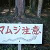 け・い・ち・つ(啓蟄)