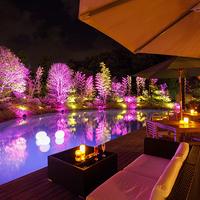 加賀温泉郷にナイトプールがオープン!森の栖リゾート&スパで魅惑のリゾート気分を楽しもう!