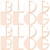 日記ブログと特化ブログの差(アクセス数、広告収益など)