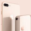 iPhone 8が、ドコモオンラインショップに入荷。一括1万円から