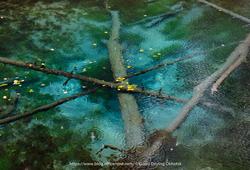 雨降りの神の子池
