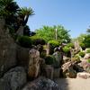 珍しい桃山時代の石庭がある粉河寺へ行ってきました。