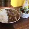 【高知市帯屋町】肉好きならタイガーカレー!これがタイガーステーキのカレーだ!