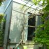 植物と私:藤よ 毎夏有難う。今年もよろしくな。(1)
