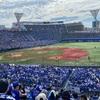 少年野球、メジャーリーグ、プロ野球と野球三昧の楽しい日曜日でした!