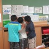 5年生:理科 メダカの観察