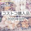 コストコ購入品紹介 2020.9月