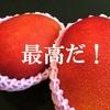 生きる悦び!暫定世界一のマンゴー!